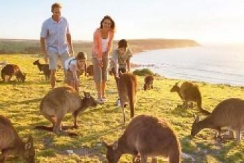 Xin Visa bảo lãnh người thân sang Úc