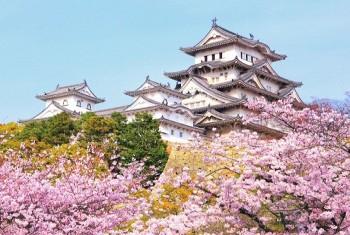 Visa Nhật Bản thăm thân