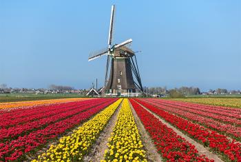 Giới thiệu chung về đất nước Hà Lan